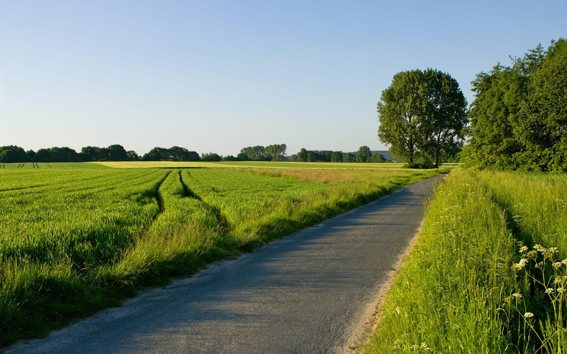 Taking the Narrow Road