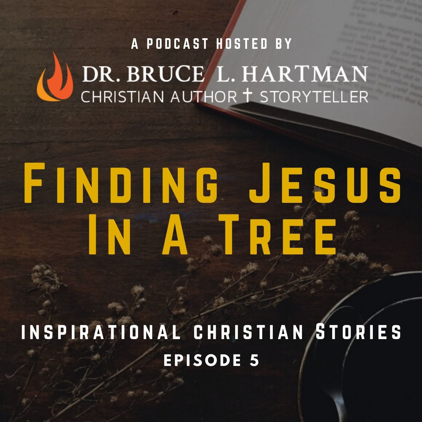 finding Jesus in a tree